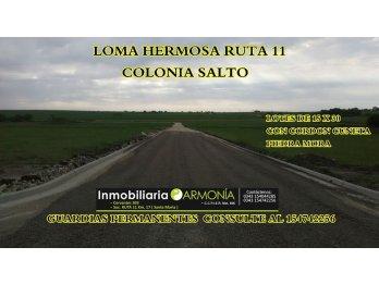 OFERTON TU LOTE EN LOMA HERMOSA RUTA 11 KM 23