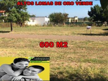 LOMAS DE ORO VERDE RUTA 11 FRENTE AL INTA