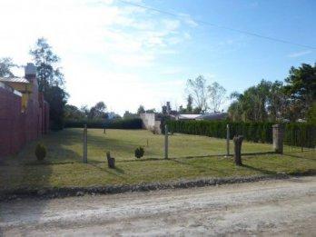 Amplio terreno en Colonia Avellaneda-zona de quintas-