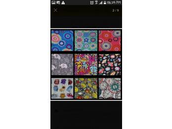 Lonas multicolor