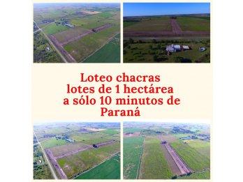 VENTA CHACRAS DE 1 HA EN RUTA 12.-ENTRADA SAUCE PINTO