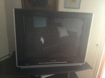 VENDO TV 29' Philips.
