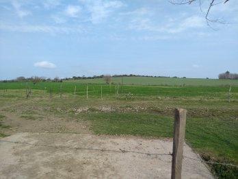 Se vende campo con casa
