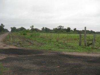 Campo 2 hectáreas - zona Isletas